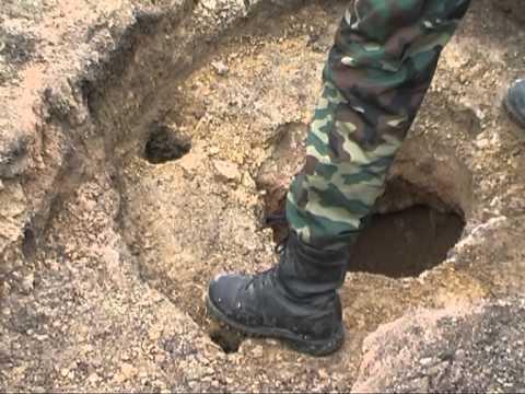 Богучар Раскопки богучарских археологов