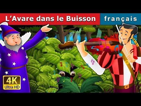 L'Avare dans le Buisson   Histoire Pour S'endormir   Contes De Fées Français Mp3