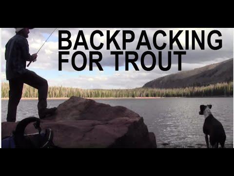 Ultralight Backpacking For Trout / Hammock Camping / Hiking  / Folding Firebox Nano Stove