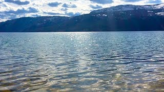 Peaceful Lake Sounds in Nature | Relax, Meditate, Focus | 10 Hours Water Sounds White Noise