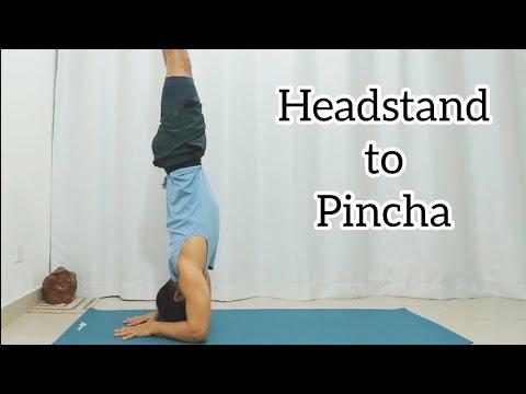 Headstand to Forearm Stand (Pincha Mayurasana)