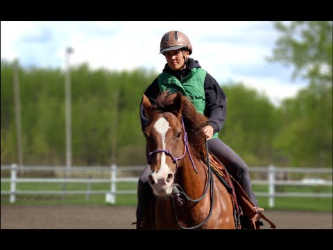 Canadian Natural Horsemanship Media Products