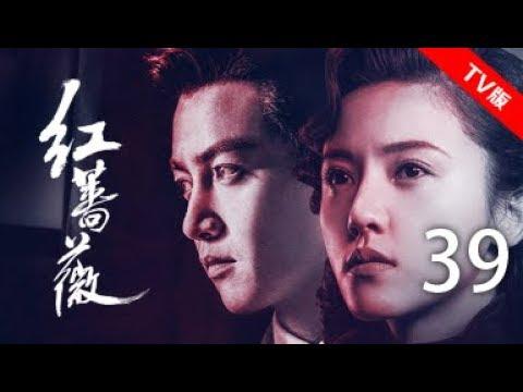 红蔷薇 39丨Wild Rose 39(主演:杨子姗,陈晓,毛林林,谭凯)【TV版】