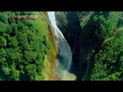 Wasabi Roots [Nagano] - JAPAN FROM ABOVE: UP CLOSE