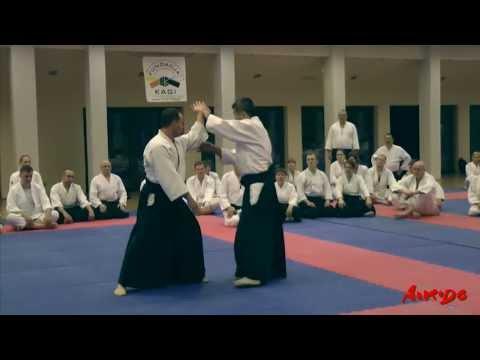 Haru Gasshuku 2013 - Shihan Shoji Seki 7 dan - seminarium