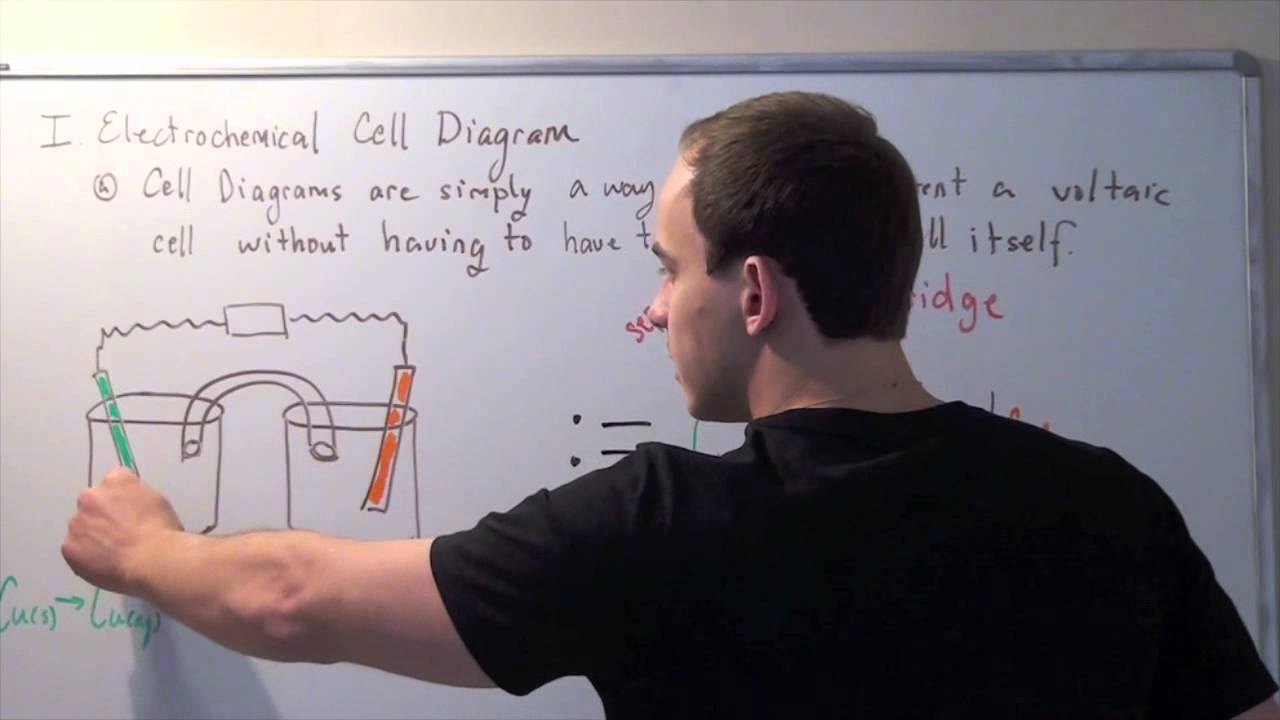 Electrochemical cell diagram youtube electrochemical cell diagram ccuart Gallery