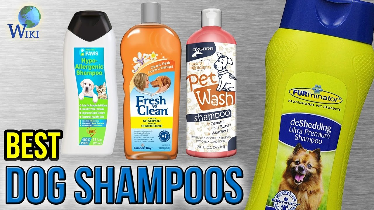 10 Best Dog Shampoos 2017