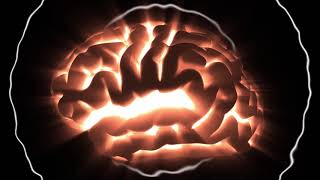 Super Brain Power Classical Music - Increase Learning Studying Memory Stimulation