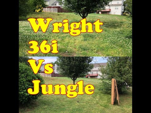 Super overgrown yard vs the Wright 36i