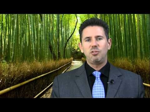 The Amazing Story of the Chinese Bamboo Tree