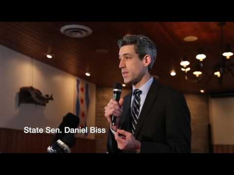 Illinois gubernatorial candidates
