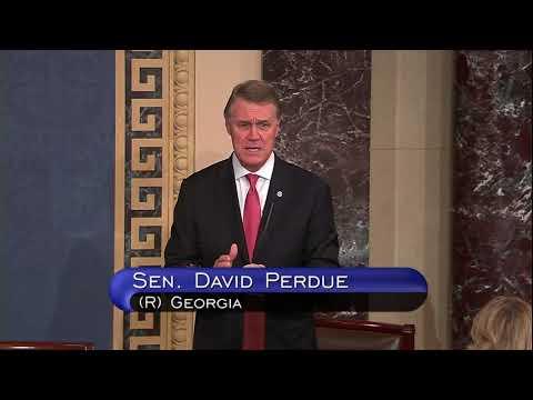 Senator David Perdue Discusses Debt Ceiling