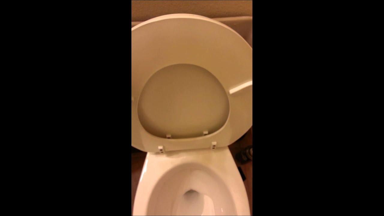 mancesa by mansfield toilet