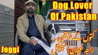 Dog Lover Of Pakistan | Raja Nouman Special | Jogii Pointer Dog