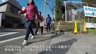 散歩カフェ in 鎌倉