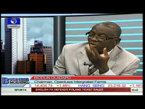 Government Needs To Pay More Attention to Agriculture -- Analyst pt3