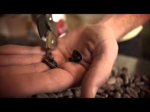 Humboldt Made: Dick Taylor Craft Chocolate