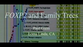 FOXP2 and Family Trees 5-23-2015 by Paul Giem
