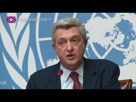 В ООН отреагировали на признание Россией документов ДНР и ЛНР