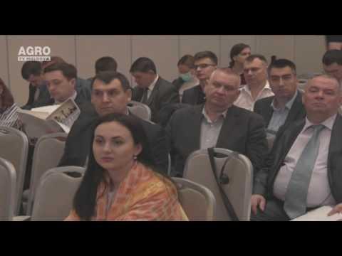 O nouă linie de creditare pentru IMM-urile din Moldova