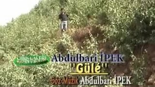 ABDULBARİ İPEK - GULE