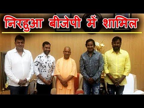 बड़ी खबर : Akhilesh Yadav के सामने लड़ेंगे चुनाव Nirahua  !| Bindaas Bhojpuriya