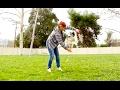 Jump Though a Hoop! - Dog Tricks Tutorial -  Dog Training by Kikopup