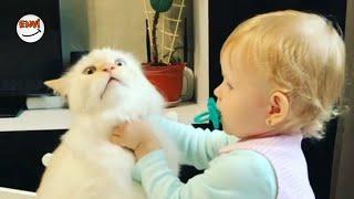 Ekim Ayının En Eğlenceli Kedi ve Bebek Videoları 👶 Komik Bebekler 2018 #envi