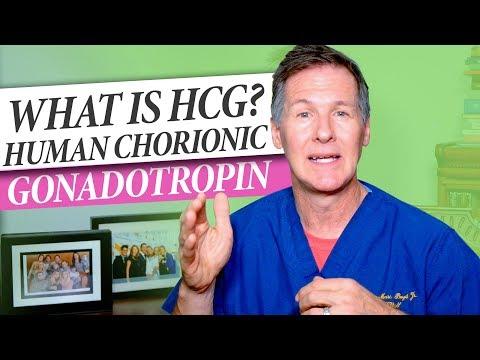 what-is-hcg---human-chorionic-gonadotropin