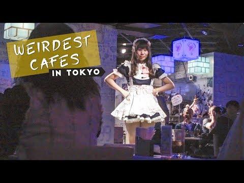 The Weirdest Cafes In Tokyo