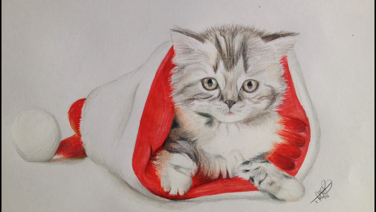 Drawing a Christmas Cat By Milou Baars