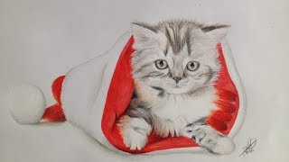 Drawing a Christmas Cat - By: Milou Baars