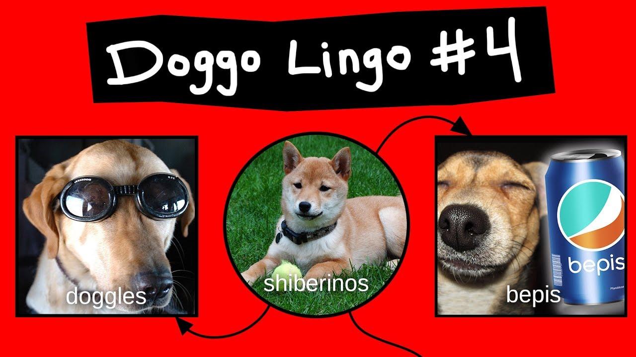 doggo-chart-part-4