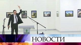 Первые результаты расследования убийства российского посла вТурции.