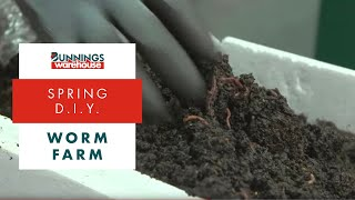 How To Make A Worm Farm - DIY At Bunnings
