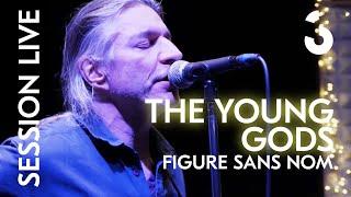 Figure sans nom - The Young Gods