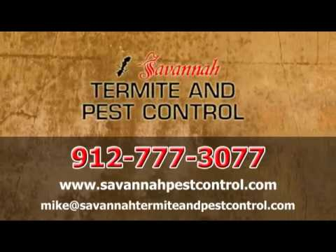our-commercial-pest-control-|-savannah,-ga---savannah-termite-and-pest-control
