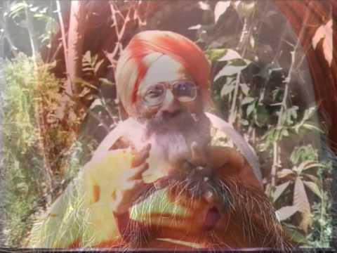 Ananda Marga Gurukula