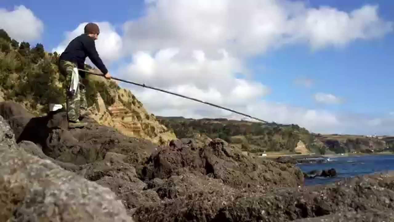 Pesca ao sargo 15 02 2014