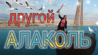 Путешествие по Казахстану Алаколь Обзор отелей цены