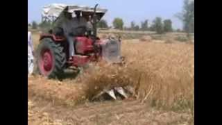 BALAJI AGRICULTURE PRODUCTS:- TRACTOR MOUNTED REAPER