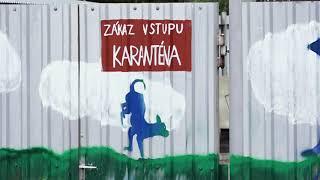 Plzeň v kostce (26.10.-1.11.2020)