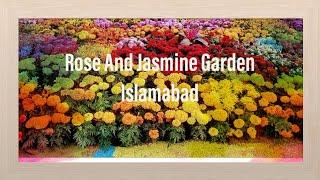 Amna ahmad