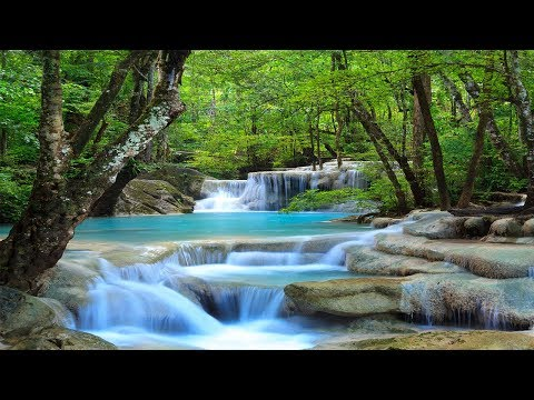 Meditation Music, Studying Music, Relaxing Music for Stress Relief, Work Music, Studying, ☯3249