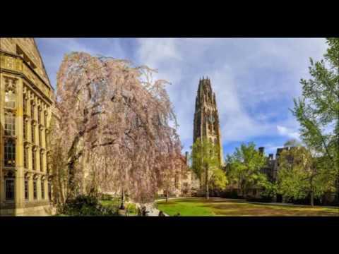 9.  Yale University in usa higher study