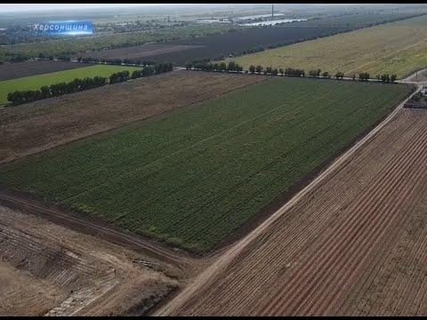 Херсон Плюс: Науковці Херсонщини занепокоєні можливим розпаюванням земель державних і комунальних с/г підприємств