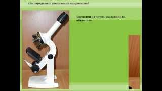 Увеличительные приборы: микроскоп и лупа.AVI