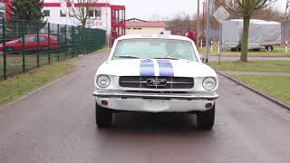 1964 1/2 Ford Mustang Coupé / V8 260cui / white / Car for Sale