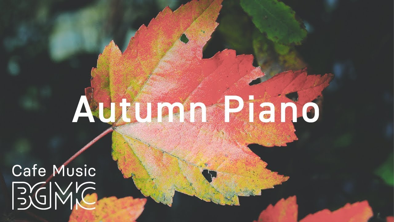 🍁Autumn Piano Jazz — Chill Out Jazz Music — Slow Cafe Jazz Lounge for Work & Study