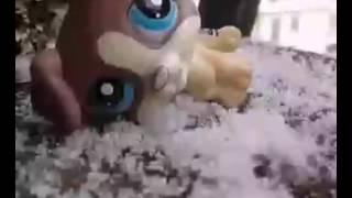 клип лпс снег Шон Пол Рокобай